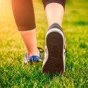 Exercise 101: Exercise Intro