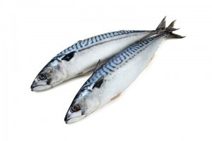 mackeral good source of omega 3, fish oil supplements for pain relief