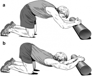 posture exercises for better posture: upper back cat